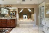 Master bath with step up tub — Stock Photo