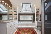 Master bath with skylight — Stock Photo