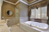 Master bath in elegant home — Stock Photo