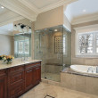 Master bath with glass shower — Stock Photo #8702090