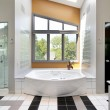Modern upscale master bath — Stock Photo #8702471
