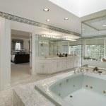 Elegant master bath — Stock Photo #8702513