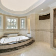 Master bath in new construction home — Stock Photo #8702586