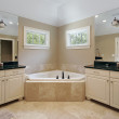 Master bath in luxury home — Stock Photo #8702589