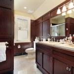 Master bath in luxury home — Stock Photo #8702612
