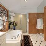 Master bath in luxury home — Stock Photo #8702613