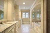 Bagno padronale con vasca con mirroring — Foto Stock