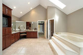 Master bath with step up tub — 图库照片
