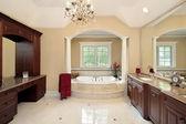 Master bath with tub columns — Stock Photo