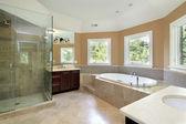 Bagno padronale con doccia in vetro — Foto Stock