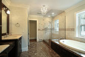 Baño principal con ducha de vidrio — Foto de Stock