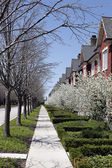 Townhouses in early spring — Stock Photo