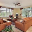 Stock Photo: Family room in suburbs