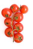 Tomater isolerade — Stockfoto