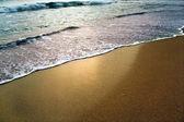 Shore landscape — Stock Photo
