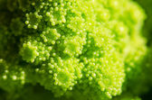 Broccolo romanesco — Stockfoto