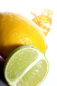 Lemon and lime — Stock Photo