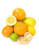 Diverse zitrusfrüchte — Stockfoto