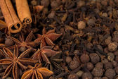 Background of spices — Stock Photo