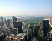 New York Central Park — Stock Photo