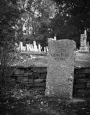 Old cemetery in fall in black and white — Stock Photo