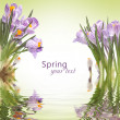 Spring background — Stock Photo #9444026