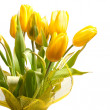 Yellow tulips — Stock Photo #9664190