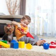 Child playing with building blocks at home. York dog sitting nea — Stock Photo