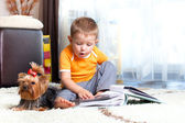 Little boy with dog york — Stock Photo