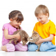 Children boy and girl playing with kittens. Isolated on white ba — Stock Photo #10412985