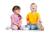 Cute children playing with kittens. Isolated on white background — Stock Photo
