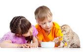 Children boy and girl feeding attractive kitten — Stock Photo