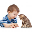 Kid playing with cat pet — Stock Photo