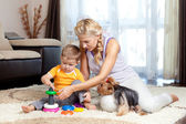 Mother, child boy and pet dog playing together indoor — Stok fotoğraf