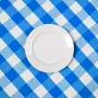White round plate on blue checked tablecloth — Foto Stock