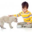 Cute child playing and feeding a puppy — Stock Photo