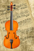 Classical violin — Stock Photo