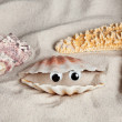 Funny beach seashell — Stock Photo