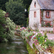 Stock Photo: Normandy cottage
