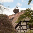 Stock Photo: Stork nest on Alsace farmhouse