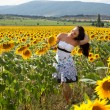 Picking sunflowers — Stock Photo