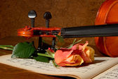 Violin and roses — Stock Photo