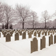 Military cemetery in the snow — Stock Photo