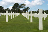 D-day graves — Stock Photo