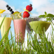 Summer smoothies in the garden — Stock Photo