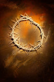 Crown of thorns on wall — Stock Photo