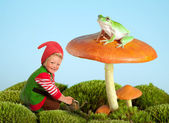 Garden gnome and frog — Stock Photo