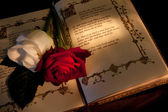 Roses and bible — Stock Photo