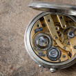 Pocket watch — Stock Photo #8723591