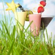 Smoothies in the garden — Stock Photo